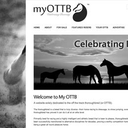 ottb-feature