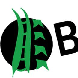 BackboneBMS Logo